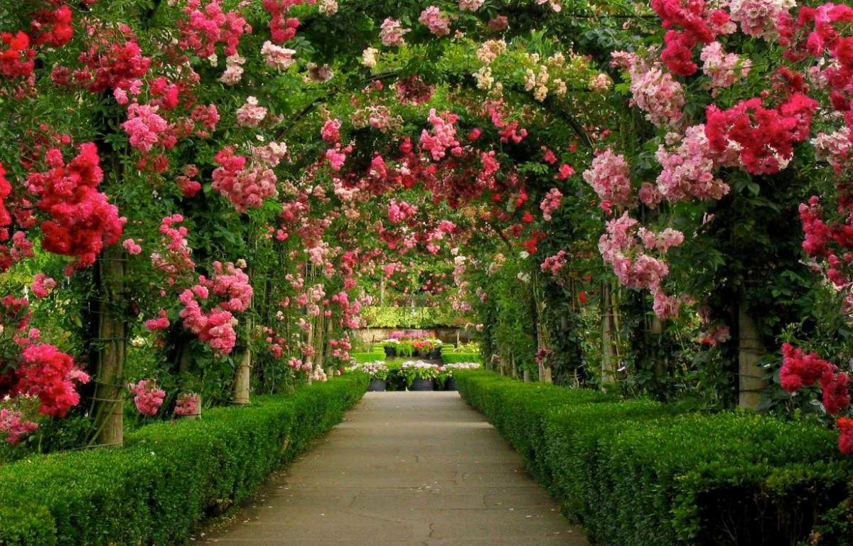 adesivos-decorativos-jardim-paisagem-natureza-painel-5m2-12823-MLB20067172248_032014-F