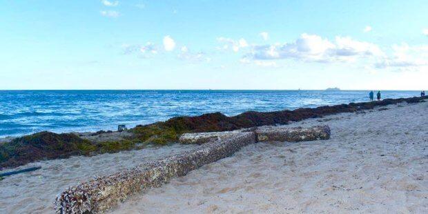Facebook-Ocean Manor Beach Resort